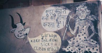 Вриндаван, Индия, реклама, коровы, юмор