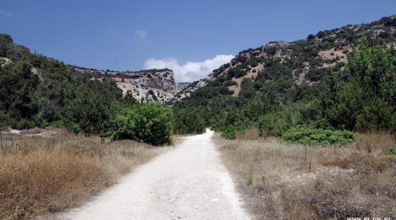 Кипр. Пафос. Avakas Gorge. Природа