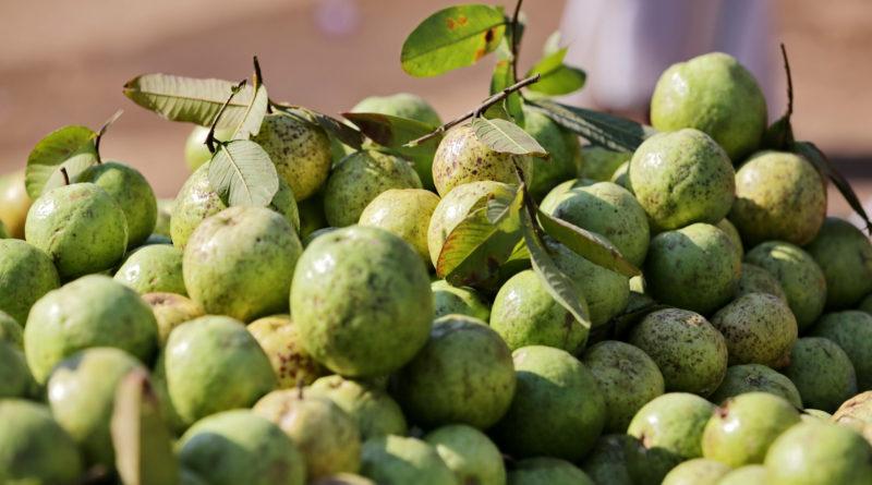 Яблоки. Вриндаван. Индия