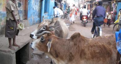 Джаганнатха-Пури. Индия