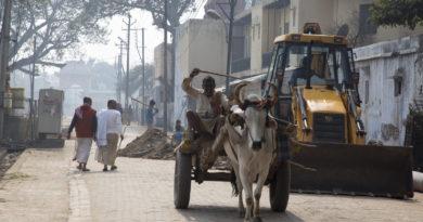 бык, трактор, повозка, Индия, Вриндаван