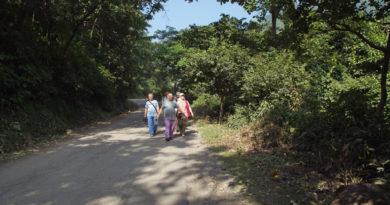 дорога к водопаду, Ришикеш, Рузов