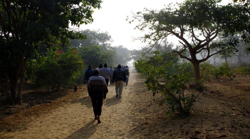 парикрама, Говардхан, Вриндаван, Индия