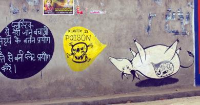 Вриндаван, Индия, графити, яд, защита природы