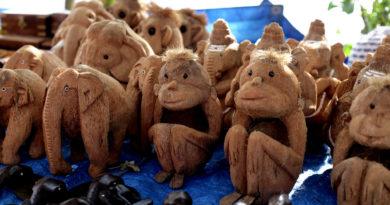 макаки из кокоса