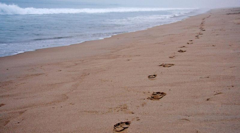 следы, песок, море